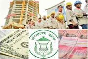 Remittance inflow increases by 43.24pc in 4 months